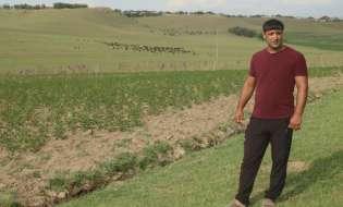 Түркістан: Төлебилік шаруа 1 гектар жерден 35 тонна өнім алып отыр