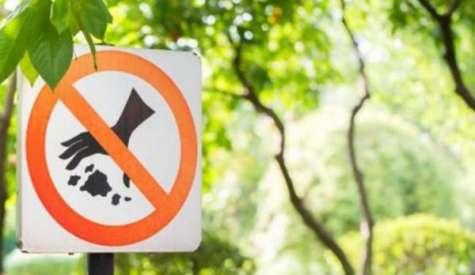 Арыс: Көшеге қоқыс тастағаны үшін айыппұлмен жазаланды