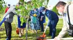 Мурат Айтенов принял участие в праздничном мероприятии по посадке деревьев